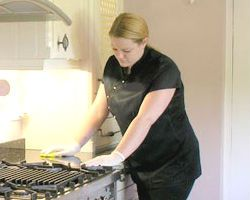 Domestic Cleaning Paddington